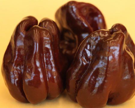 Chocolate Habanero paprička